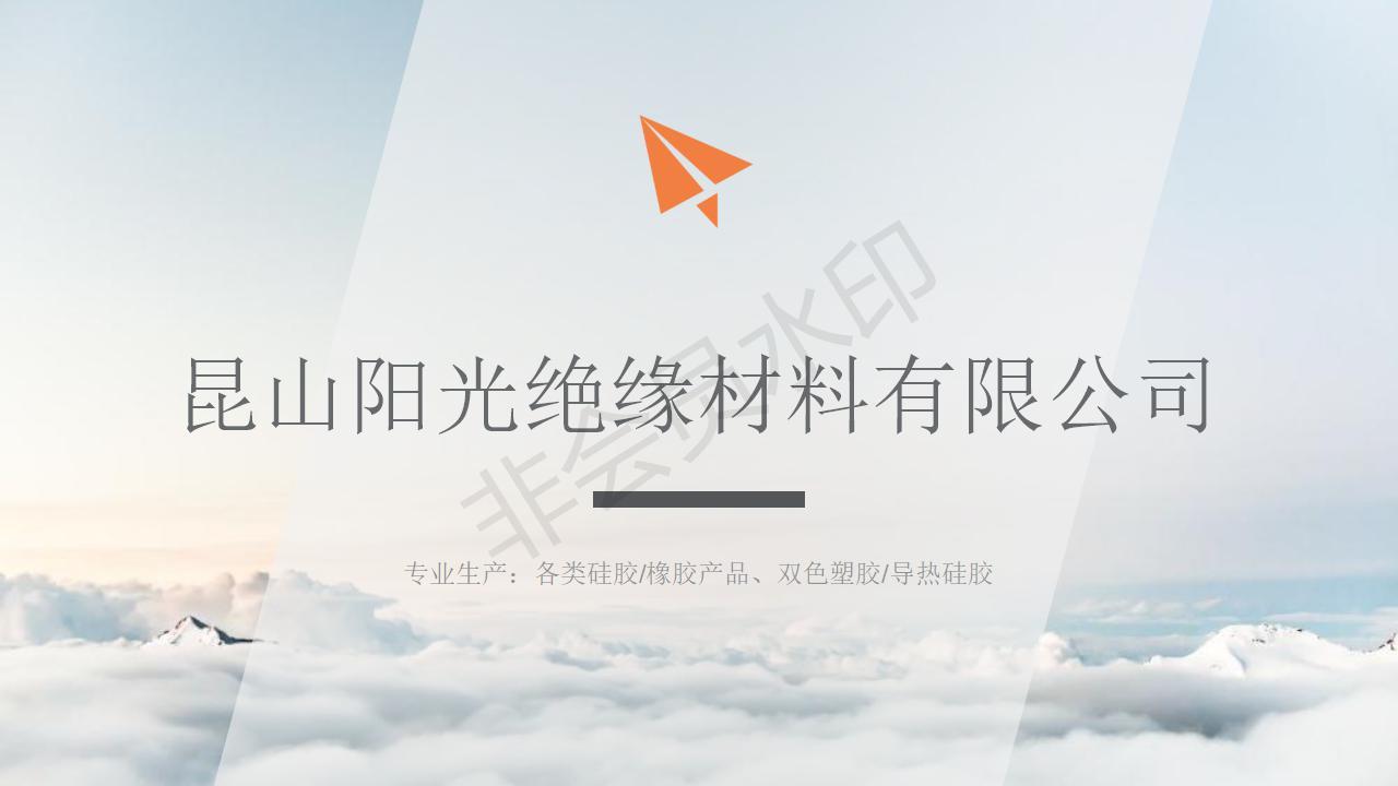 昆山阳光绝缘材料有限公司简介刘美简化_01.jpg